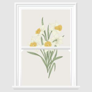 daffodil Decorative Window Film