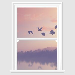 Flying Birds at dusk decorative frosted window film