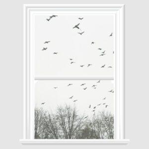 Flying Birds Decorative Window Film