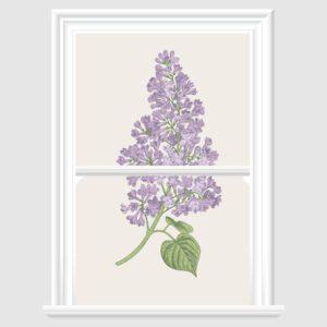 Lilac Flower Decorative Window Film