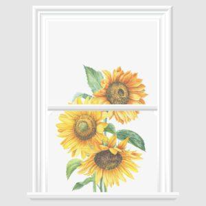 Sunflower Decorative Window Film